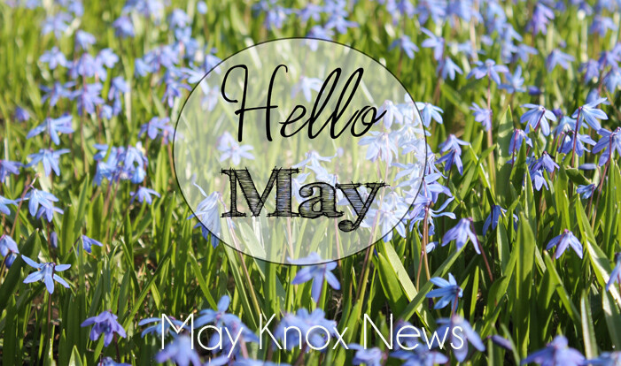 May Knox News