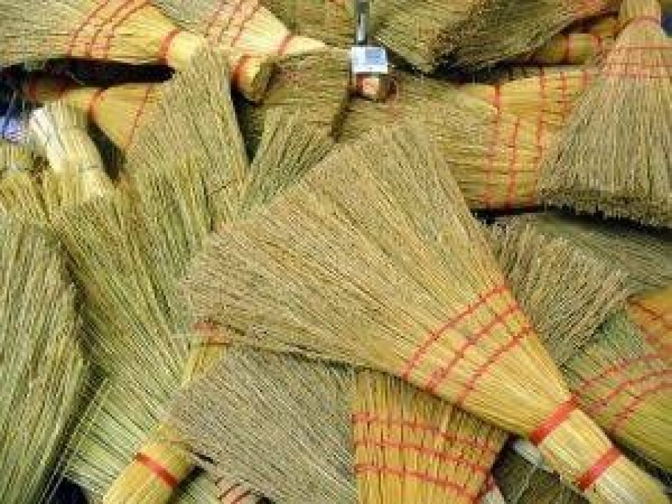 Youth Broom Hockey - Cinco do Mayo theme