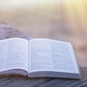 Daybreakers Bible Study